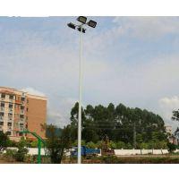 6米篮球场灯柱 配2个300WLED灯具 康腾体育可按装