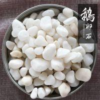 灵寿县博淼直销最新的天然鹅卵石 鹅卵石价格行情走势 表观密度为2.61千克每立方米