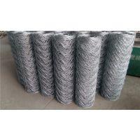 衡水六角孔镀锌圈羊铁丝防护网厂家联系:15131879580