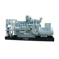 郑州星光销售Q135系列燃气发电机组