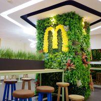 供应人造仿真植物墙 假垂直绿化墙