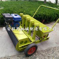 可调节种植深度的大蒜播种机 汽油手推式种蒜机