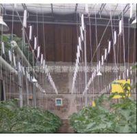 全国热销 进口吊秧器6米自动放线大棚番茄落蔓绳6米、10米 黄瓜吊钩长度可定制