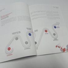 深圳手提袋 优惠券印刷 公司封套 宣传画册设计印刷