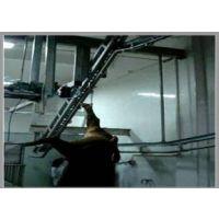 屠宰机械设备猪屠宰牛坡式提升机13.1青岛嘟嘟乐厂家直销