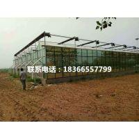 云南红河玻璃温室在哪里有卖的