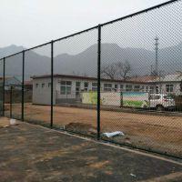 安平球场围网厂就找飞创护栏网厂@主营门球场防护网13784187308李