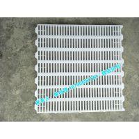 养鸭用塑料漏粪板 70*70cm 工程聚丙材质 厂家直销