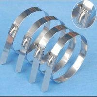 厂家直销5*200自锁不锈钢扎带 304材质 100条包装 量大价优 可免费寄样