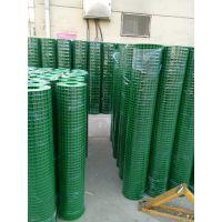 浸塑电焊网哪家好 浸塑电焊网多少钱一米 浸塑电焊网厂 浸塑电焊网图片