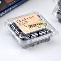 喇叭花125克蓝莓包装盒 超市杨梅盒 透明塑料水果盒子100个带孔