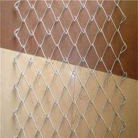 厂家直销护坡热镀锌勾花网 圈地镀锌防护网
