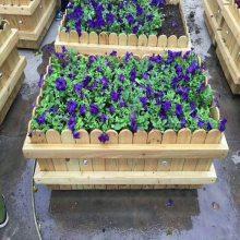 平顶山高档花箱量大价优,园林花箱生产商,真正产地厂家