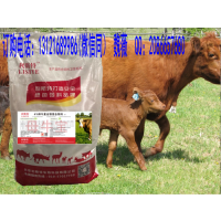 4%母牛专用预混料经销,怀孕母牛专用饲料