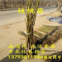 http://himg.china.cn/1/4_519_237936_800_800.jpg
