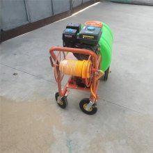 农用汽油打药机 启航果树喷雾器 汽油高压远程果树打药机
