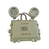 供应青岛腾达BAJ51双头LED防爆应急灯