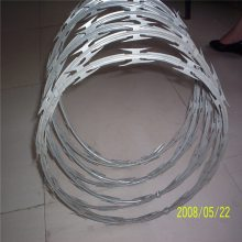 热镀锌刀片刺绳 不锈钢刺绳网 双股铁丝线