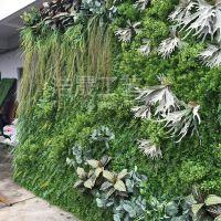 东莞浩晟仿真植物墙 草皮单品混合搭配独特建材家居仿真植物墙