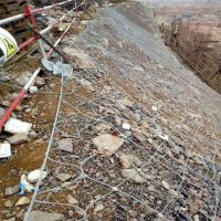 主动防护网批发价格 河北缆瑞GPS2型防护网施工热镀锌钢丝绳网