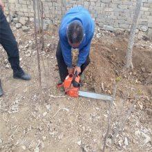 迷你型油锯机 润众 使用灵活便捷伐木油锯