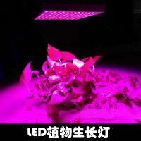 XIHV外贸爆款45W植物生长LED补光灯2835光源