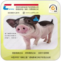 畜牧业管理 猪马牛羊动物耳标 监管生长繁殖过程统计管理rfid溯源芯片标签