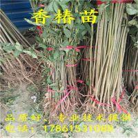 http://himg.china.cn/1/4_521_234854_800_800.jpg