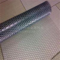 福建厂家供应QSn6.5-0.4铜板网 100目过滤平纹黄铜网 紫铜网