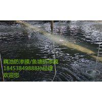 http://himg.china.cn/1/4_522_1032445_800_480.jpg