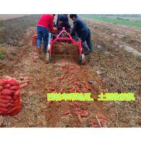 25马力小四轮带红薯收获机 小型薯类收获机