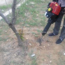 苗圃快速起球挖树机 大树苗移栽机 带土球移植机