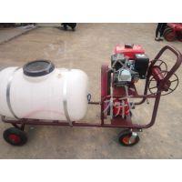 厂家直销高压喷雾器 高压打药泵 小型汽油打药机