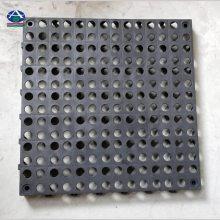 高分子塑胶材料格栅@高承载免挖沟组合式格栅【河北华强】