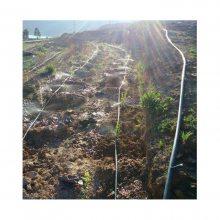 常用山区柑橘果树喷灌管型号规格
