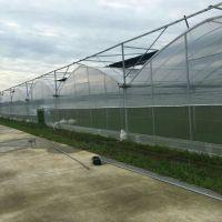 无锡镀锌大棚管、大棚骨架 用于建设蔬菜养殖温室大棚、质量保证