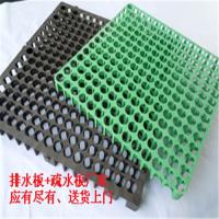 提供颜色绿色/白色块状排水板*绿化HDPE蓄排水板