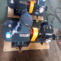 厂家供应WQCB29/0.6保温沥青泵 铸钢材质