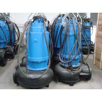 蓝深WQ60-13-4污水泵 配耦合装置、导杆、吊链