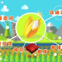MG动画飞碟说视频制作产品介绍二维2D后期剪辑佛山影视电视广告公司G-012