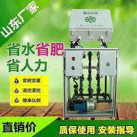 山东智能施肥机厂家 大棚蔬菜水肥一体化设备全自动灌溉省水省肥