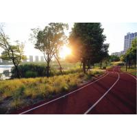 石家庄幼儿园,学校,公园,健身步道,塑胶场地工程施工