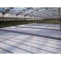 移动ABS面板潮汐苗床工作原理-灌溉优势,技术指导,厂家安平华耀