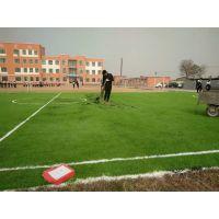 沈阳足球场草坪施工超低价格