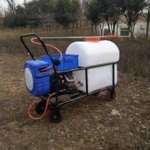 精品供应园林轻便喷雾器家用静音消毒机电动推车杀虫机