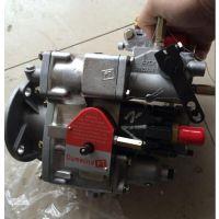 4951495燃油泵 山推SD32 国三燃油泵