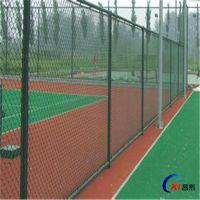 厂家促销学校操场隔离网 体育场护栏网 球场护栏网 运动场围栏网