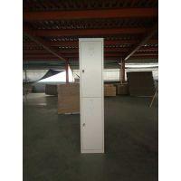 丰龙钢制二门更衣柜员工储物柜浴室柜铁皮柜存包柜拆装柜
