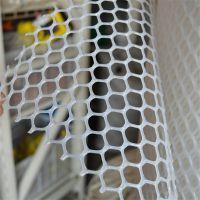 塑料漏粪平网厂家 养鸡养鸭育雏网 汽车坐垫网