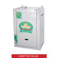 洛克电热蒸汽发生器_电热蒸汽机